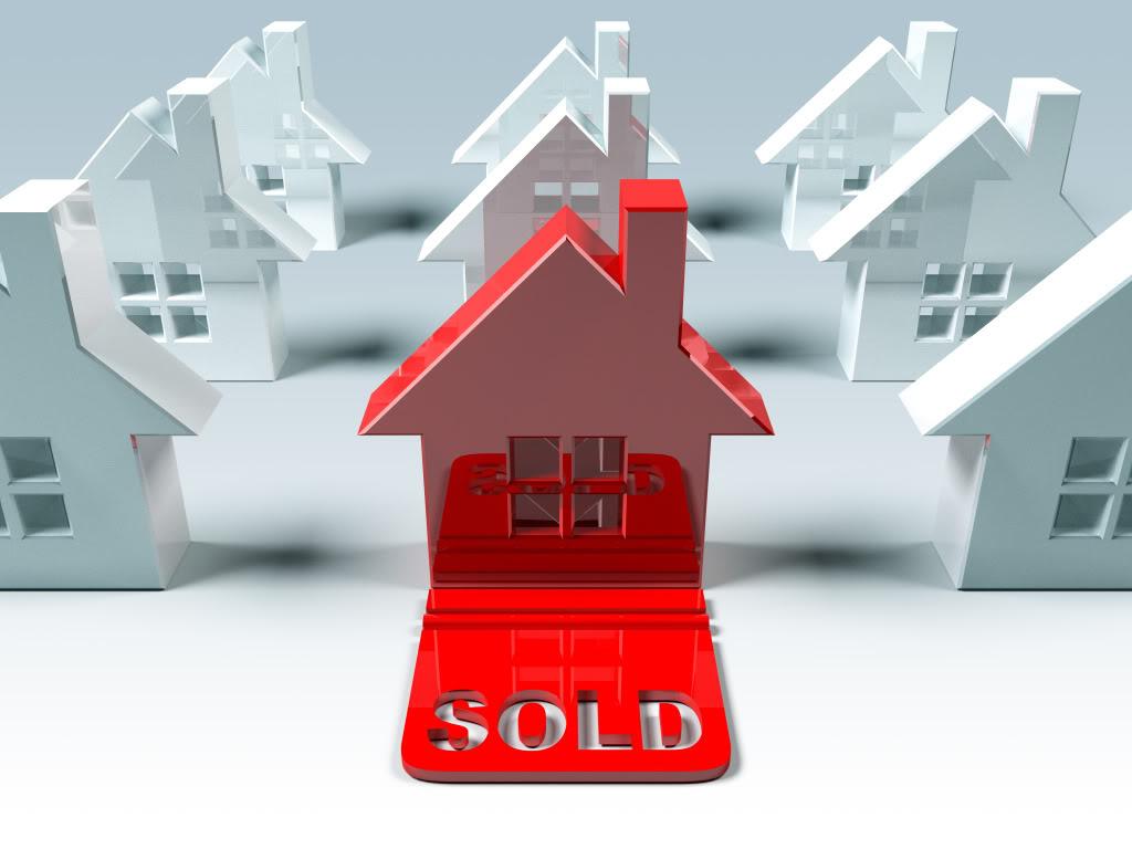 Hutt Real Estate Agent